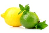 10293470-fresh-lime-lemon-and-mint-isolated-on-white